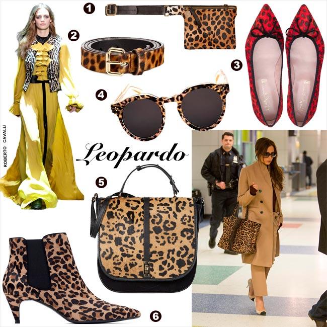 accesorios_leopardo_1-z